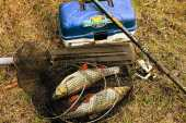 Почасовая аренда Рыболовное снаряжение летнее (спиннинг/удочка, блесны, стулья, садок) в Тамбове